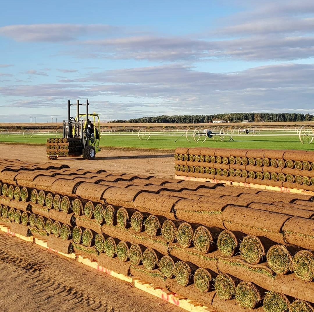 TPI Seeking Member Updates to New Edition of Sod As Agriculture Document
